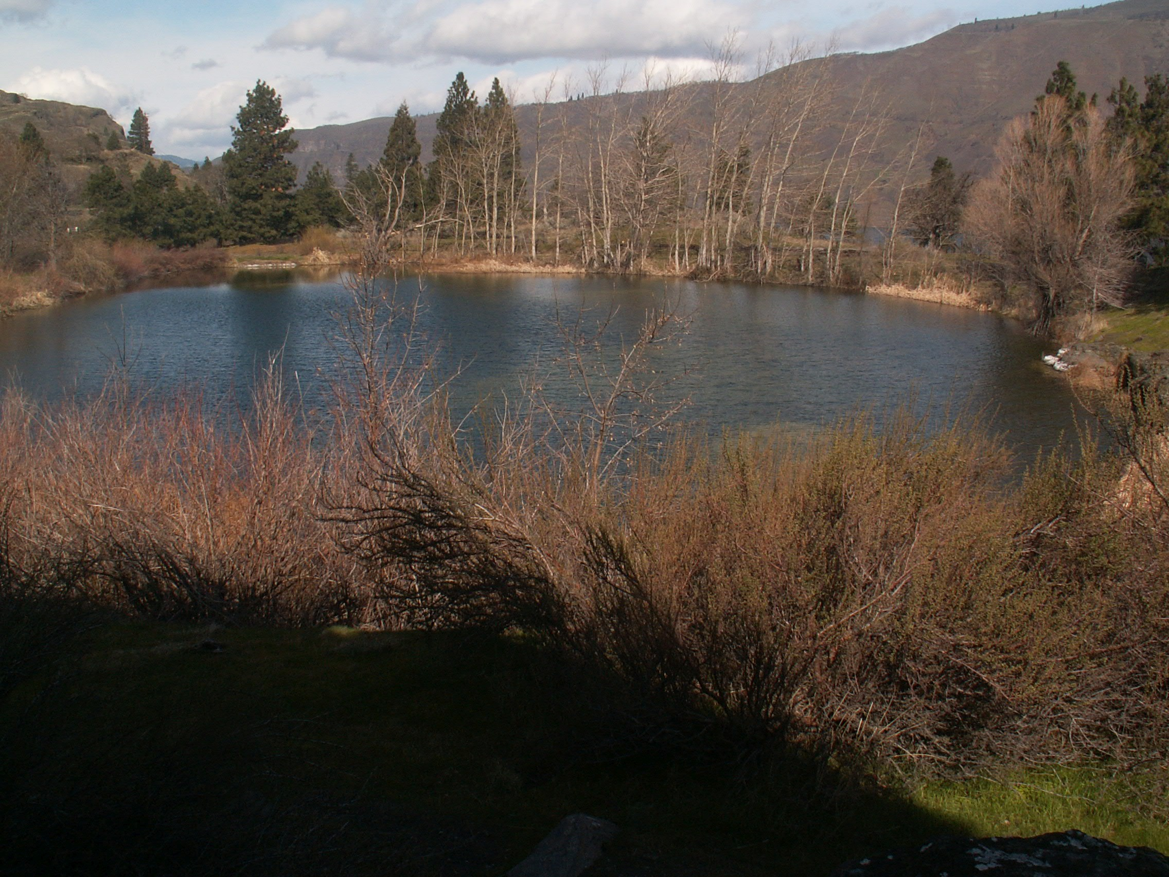Kolk Pond at the Columbia Gorge Discovery Center